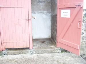 toilettes-anciennes-300x225