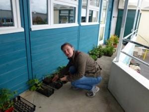 Plants-2-300x225